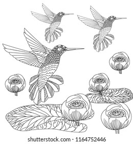 Doodle floral and hummingbird drawing. Art therapy coloring page.