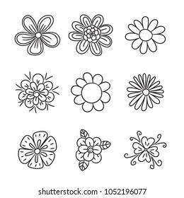Doodle flower set. Hand drawn line sketch floral collection