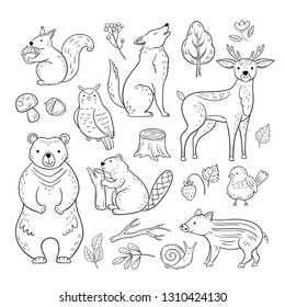 Doodle forest animals. Woodland cute baby animal squirrel wolf owl bear deer snail childrens sketch vector hand drawn set