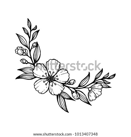 Doodle Hand Draw Flowers Decoration Coloring Stock Vector Royalty