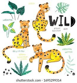 doodle leopard tropical leaves hand drawn kids set