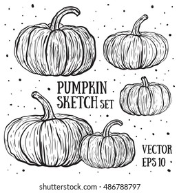 Doodle pumpkins.Vector paint hand drawn picture in cartoon style. Stock illustration.