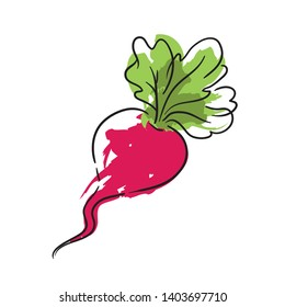 Doodle radish icon - hand drawn radish sketch