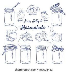 Doodle set of Jam, Jelly & Marmalade - jar, glass, spoon, apricot, blueberries, lemon, strawberry, orange, cherry, mandarin, hand-drawn. Vector sketch illustration isolated over white background.