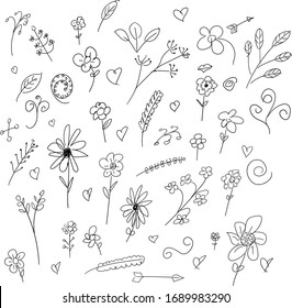 doodle sketch hand drawn flower vector element