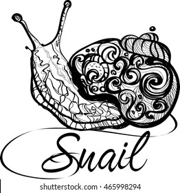 Doodle Snail. Hand Drawn Doodle Vector Outline. Logotype Snail
