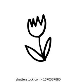 doodle tulip black outline on a white background. plant forest flower