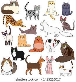 doodle of various cats breed