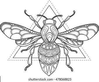 Doodle vector hand drawn outline bee illustration. Ornate zentangle bee drawing for coloring book