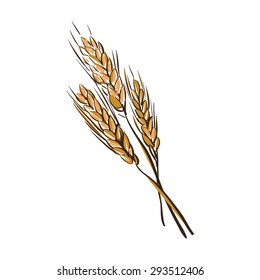 doodle wheat spikelets isolated on a White Background