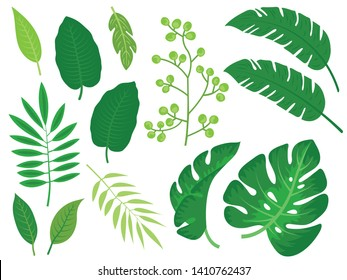 doodles of palm and banana leaves and various natural plant branches and leaves vectors illustration in free hand drawing style