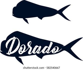 Dorado fish. Sea fish. Vintage fish.