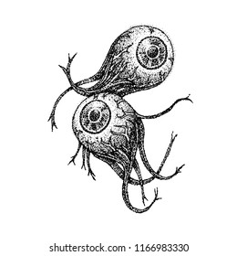 Dotwork Two Eyeballs. Vector Illustration of T-shirt Design. Tattoo Hand Drawn Sketch.
