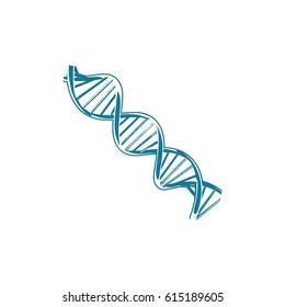 Double Helix DNA Logo Vector