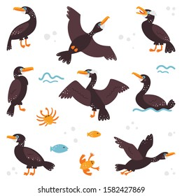 Double-crested cormorant on a white isolated background. Children's pictures.