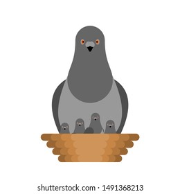 Dove and chicks in nest. Pigeon City bird. vector illustration