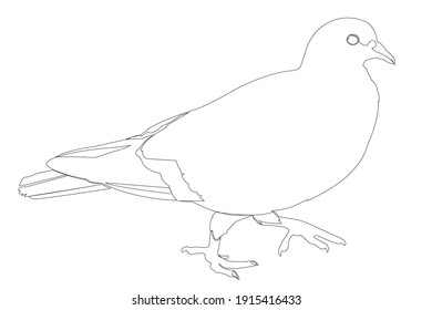 Dove in a continuous line pattern