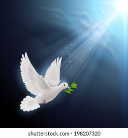 Dove of peace flying with a green twig after flood in sunlight