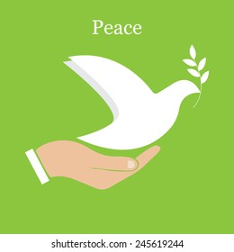 Dove of peace and olive branch