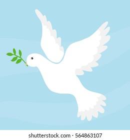 Dove of peace, dove symbol of peace, a white bird. Flat design, vector illustration, vector.