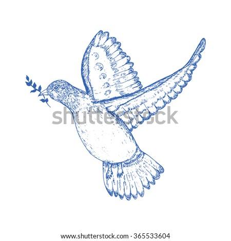 Dove Pigeon Hand Draw Bird Symbol Stock Vector Royalty Free