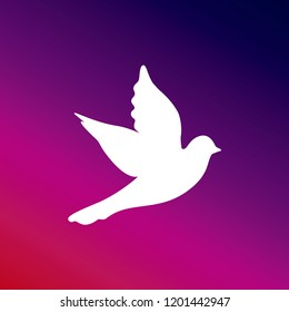 Dove purple and pink gradient material background. white icon minimal design