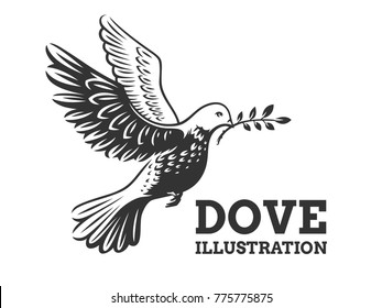Dove of the world - a pigeon in flight with a twig of a olive branch - logo, emblem, illustration design on a white background.