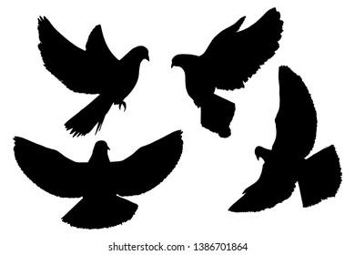 Imágenes, fotos de stock y vectores sobre Dove Silhouett