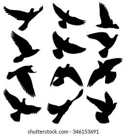 doves silhouettes; pigeons vector set; isolated flying birds