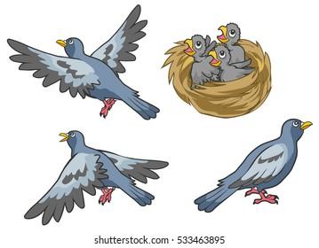 Doves,birds set,Mother bird color gray cartoon vector