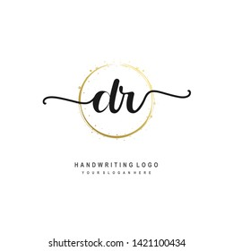 DR initial signature logo. handwriting logo template vector,