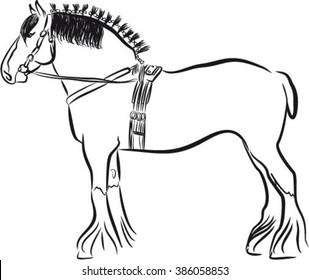 Draft heavy horse, shire horse