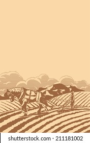 Draft Horse Farming