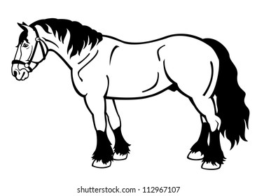 draft horse,black and white vector illustration,side view image isolated on white background