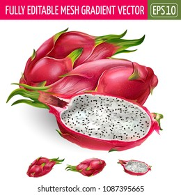 Dragon fruit on white background. Vector illustration