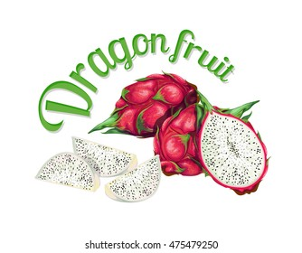 Dragon fruit. Vector illustration made in a realistic style. Isolated on white background.