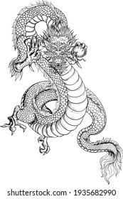 Dragon hand drawn outline.Chinese dragon isolate backgroung.