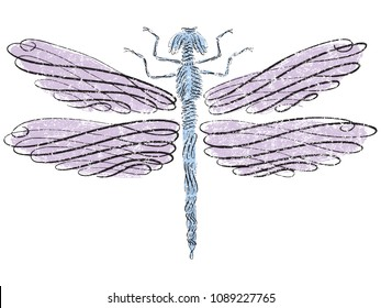 Dragonfly in calligraphic line art