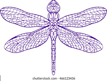 dragonfly line art coloring book page vector illustration