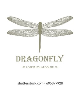 Dragonfly logo in vintage style on a black background. Stylish design of tattoos. Vector illustration. Creativity, freedom, speed concept. Brand & corporate identity template. Editable. Sample text