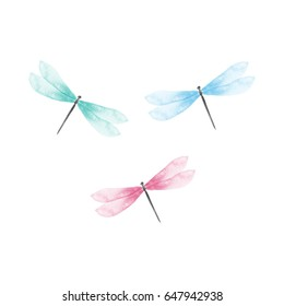 Dragonfly watercolor vector illustration