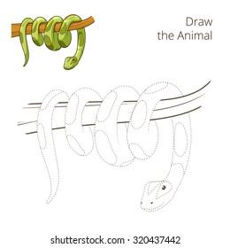 Draw the animal boa snake educational game vector illustration