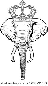 draw in black and white of head elephant with crown vector illustration