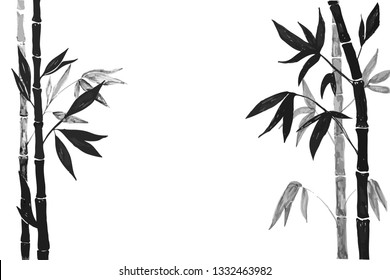 Drawing bamboo branches and leaves on the white background. Bamboo plant silhouette.