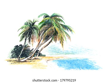 Drawing beach with palm trees. Vector illustration