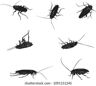 drawing of a black cockroach, isolated silhouettes