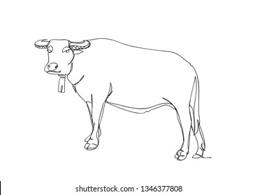Drawing a continuous line of buffalo