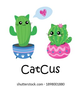 Drawing cute cat Cactus love on white