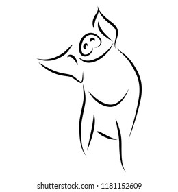 drawing of cute pig vector illustration simple concept zodiac of pig.