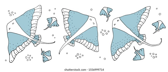 Drawing - funny stingrays and hand drawn elements. Eps10 vector line-art illustration.